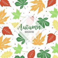 Motif feuilles tombantes vertes et jaunes