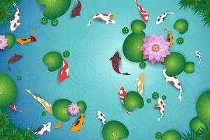 Vue de dessus du lac propre avec poissons koi