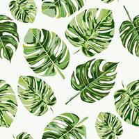 Modèle sans couture de feuilles tropicales vecteur