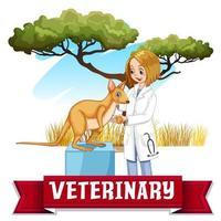 Femme vétérinaire examinant le kangourou dans le parc vecteur