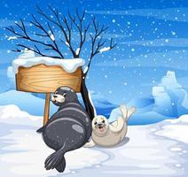 Deux phoques un jour de neige vecteur