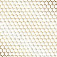 Motif décoratif hexagonal doré et blanc vecteur