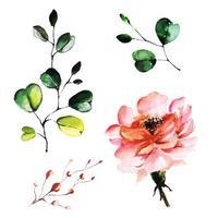 Belle aquarelle florale et feuilles vecteur