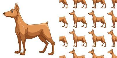 Modèle de chien doberman sans soudure et isolé vecteur