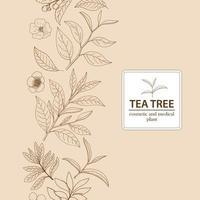 Arbre à thé en feuilles et fleurs. Fond à base de plantes dessiné à la main. vecteur