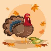 dinde avec des épis de jour de thanksgiving