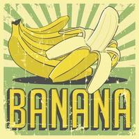 Signalisation rétro vintage banane vecteur
