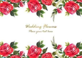 Rose rouge décorative avec fond de carte vecteur