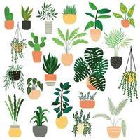 Collection de plantes d'intérieur d'intérieur dessinés à la main sur blanc vecteur