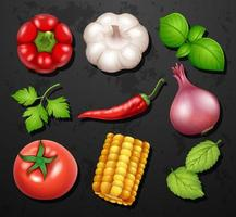 Variété de différents légumes et herbes vecteur