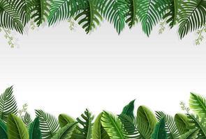 Belle bordure de feuille de palmier vecteur