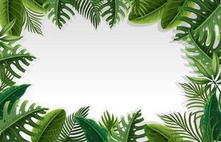 Un beau cadre de feuilles vecteur