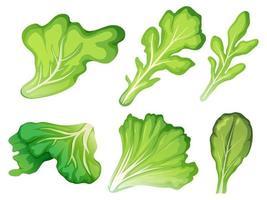 Un ensemble de feuilles de salade vecteur