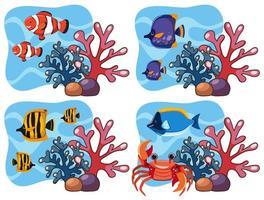 Un ensemble de corail et de poisson vecteur
