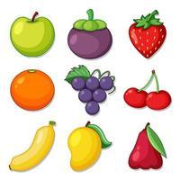 un ensemble de fruits biologiques vecteur