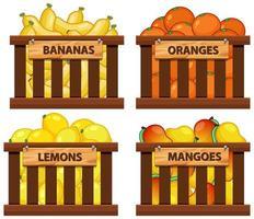 panier plein de fruits vecteur