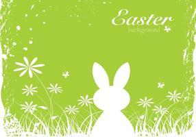 Violet vert de lapin de Pâques