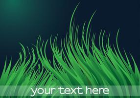 Fond de vecteur de l'herbe verte