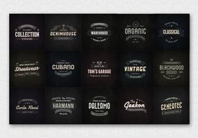15 vecteurs de logo d'insigne vintage vecteur