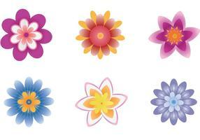 Vecteur de fleurs polynésiennes