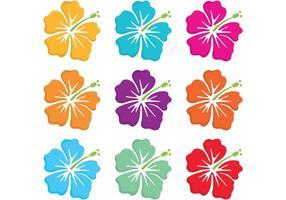 Vecteurs de fleurs polynésiennes hawaïennes