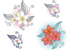 Fleurs polynésiennes vectorielles gratuites vecteur