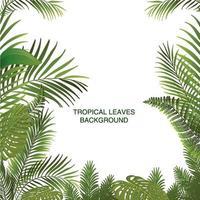 impression de fond de feuilles tropicales vecteur