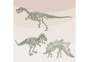 Vecteurs aux os de dinosaures vecteur