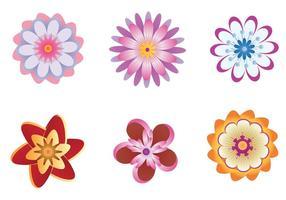 Vecteurs de fleurs polynesiennes colorées