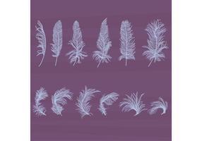 Ensemble de vecteurs de plumes texturés vecteur