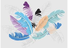 Feather Isolated Vector Background