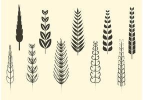 Vecteurs de céréales et de blé incomplets et solides vecteur