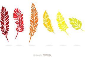 Pack coloré en couleurs de plumes vecteur