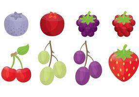 Vecteurs de baies et de fruits vecteur
