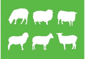 Silhouette des moutons vecteur