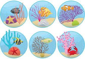 Mini récifs coralliens vecteur