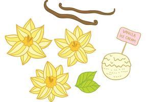Vecteurs de fleurs à la vanille dessinés à la main vecteur