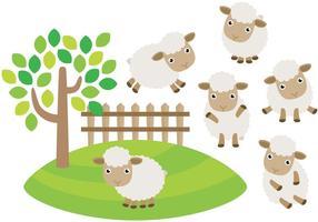 Mignons vecteurs de moutons vecteur