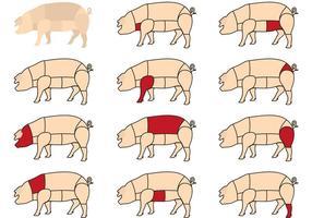 Coupes de viande de porc vecteur