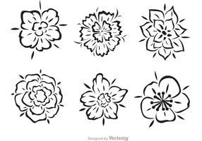 Vecteurs de fleurs tribales hawaïennes vecteur
