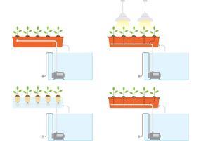 Vecteurs hydroponiques vecteur