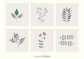Vecteurs feuilles et succursales vecteur