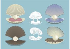 Vecteurs libres de coquilles de perles vecteur