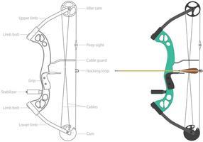 Vecteurs d'arc composés de sport vecteur