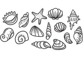 Vecteurs de coquilles de perles libres vecteur