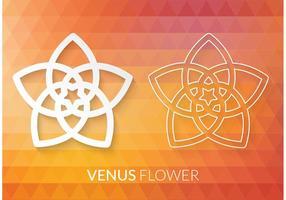 Pentagramme de fleur de Venus Vector gratuite