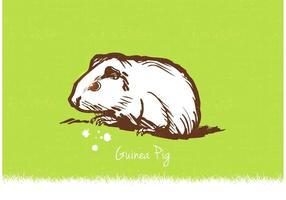 Illustration vectorielle gratuite de cochon d'Inde vecteur