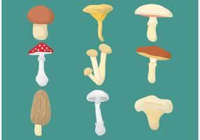 Vecteurs de champignons vecteur