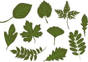 Vecteurs de feuilles dessinées à la main vecteur