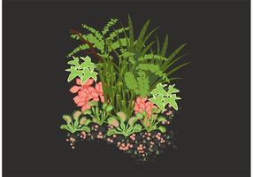 Vector de jardin secret